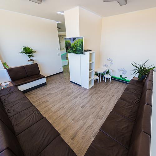 Zahnarzt Potsdam - Siemund / Hashemi - Wartezimmer der Praxis